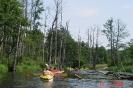 Mit dem Kanu auf der Krutynia_37